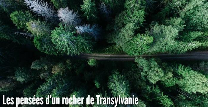 Les pensées d'un rocher de Transylvanie