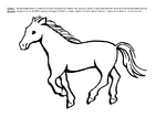 Le cheval et l'âne