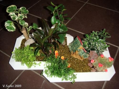 jardin miniature 2