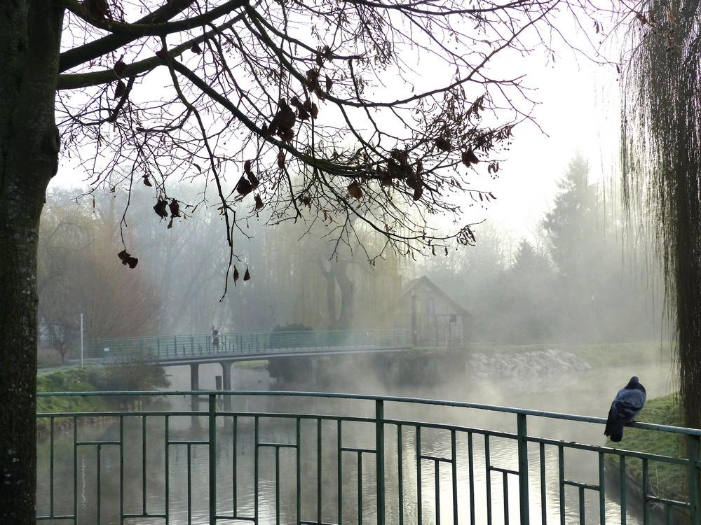 Parc St-Pierre, le jour de Noël