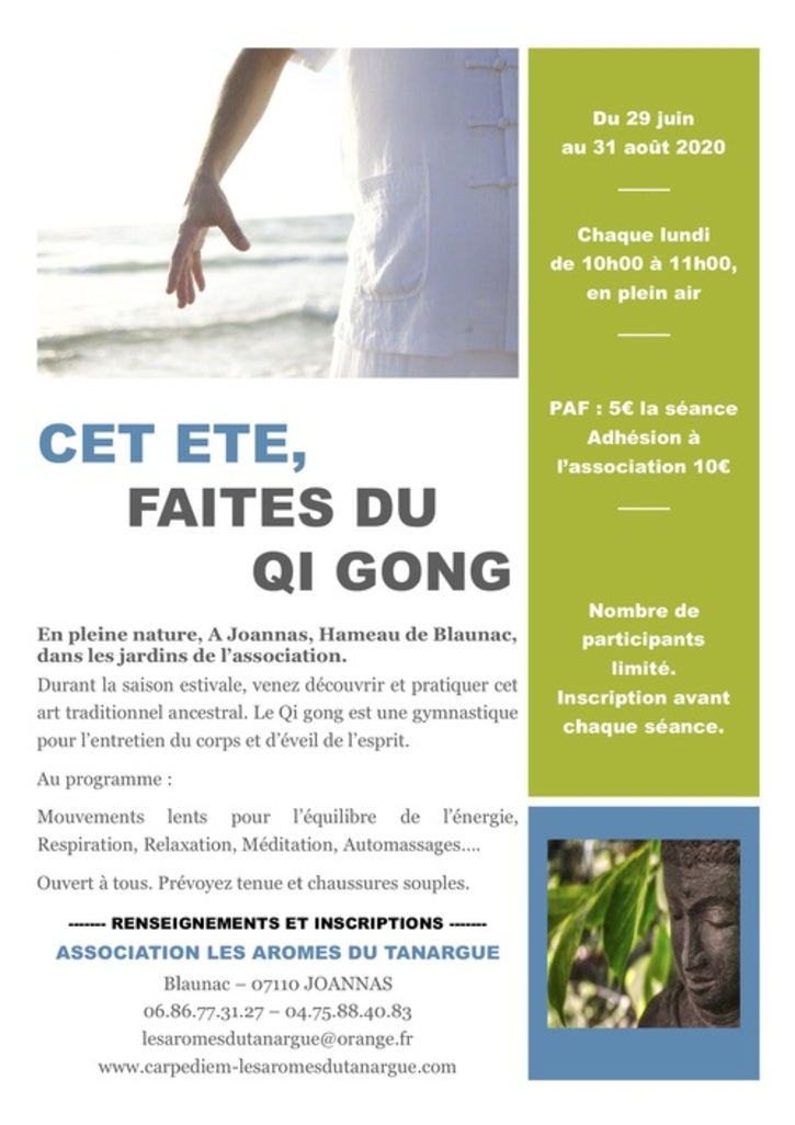Retour sur les séances de Qi gong de cet été 2020