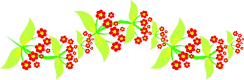 Flower Borders (97).png