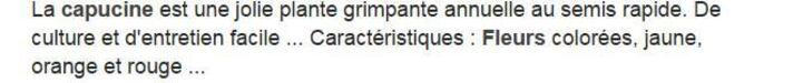 * * FIN DU MOIS DE JUIN : .!!**LES CAPUCINES**