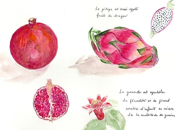 grenade et pitaya