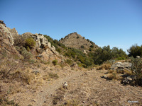 Sur les Hauts de Banyuls