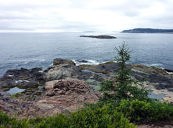 Acadia-NP-vue-de-Great-Head-Trail-b.jpg