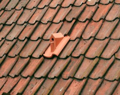 Nichoirs de toits ...