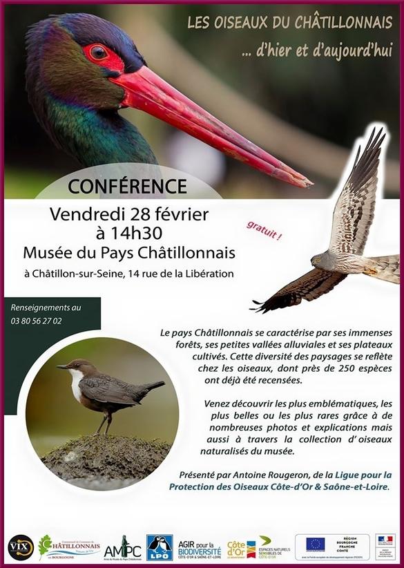 Une conférence passionnante sur les oiseaux du Châtillonnais aura lieu bientôt au Musée....