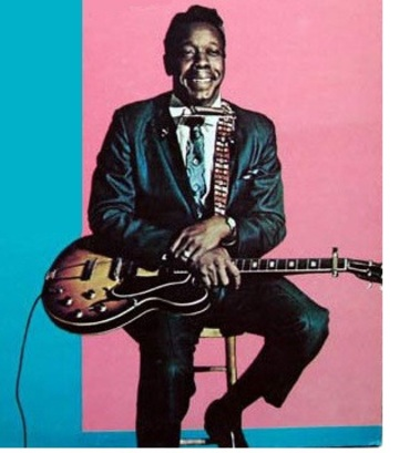 SLIM HARPO - KNEW THE BLUES - COMPILATION - 1970