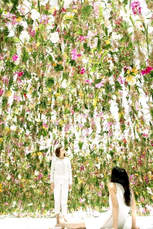 Mon jardin des airs