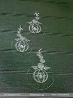 Crop circles et Ovni.