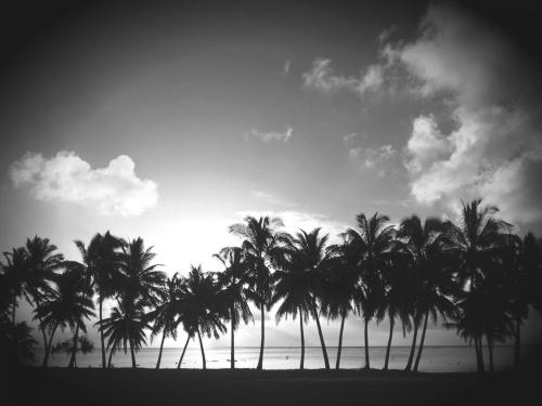 Images de paysages en noir et blanc.