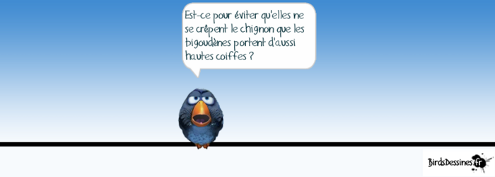 Les zozios. 26)