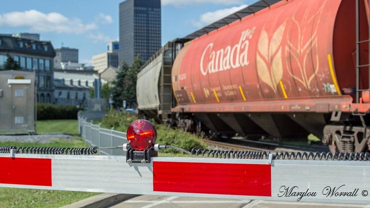 Montréal : Train miniature et trains de marchandises