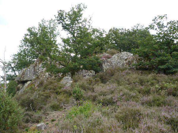 Vers-cascades-des-Moulines-10.jpg