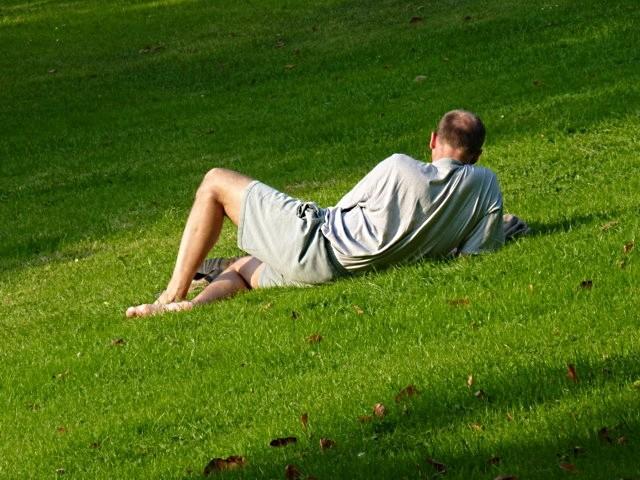 Jardins et pelouses de Metz 17 mp1357