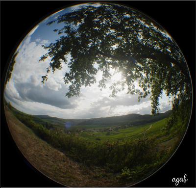 photos rondes d'Alsace (région du Mont Saint Odile)