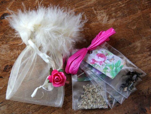 Seeds of Love 2018 : du bonheur dans la boîte aux lettres ! (6)