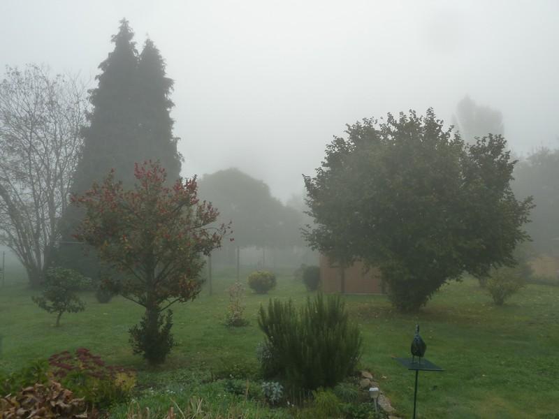 Brouillard ...