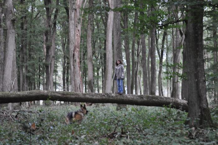 Petite journée en forêt avec mon père