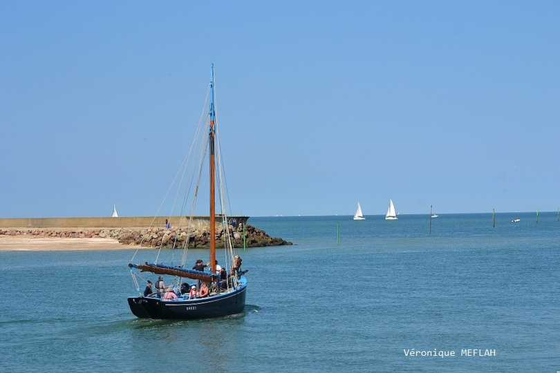 Calvados : été 2018 : Trouville-sur-Mer : Les voiliers