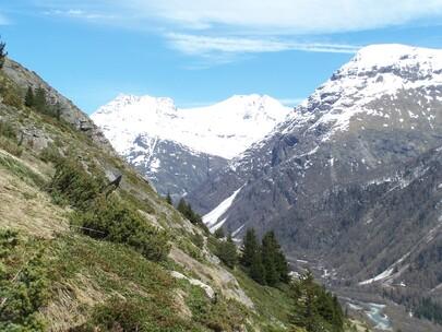 Haute-Maurienne