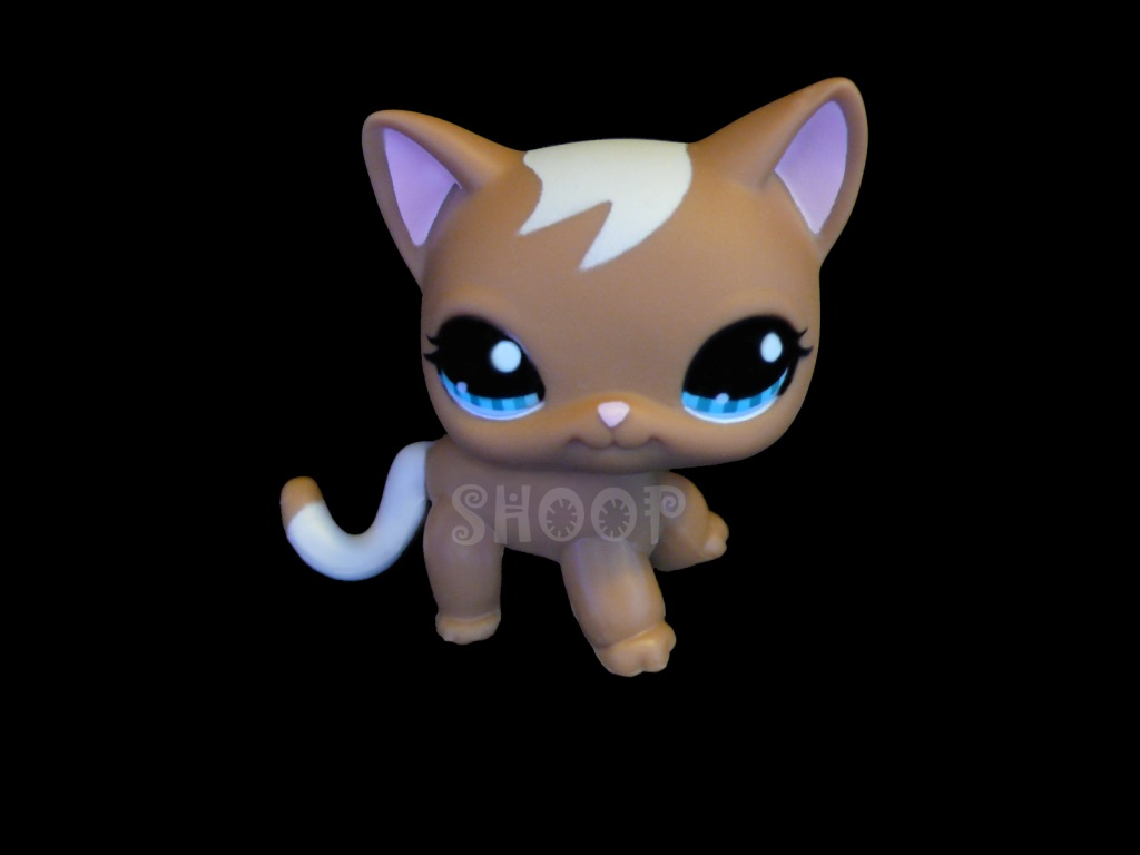 LPS 1170