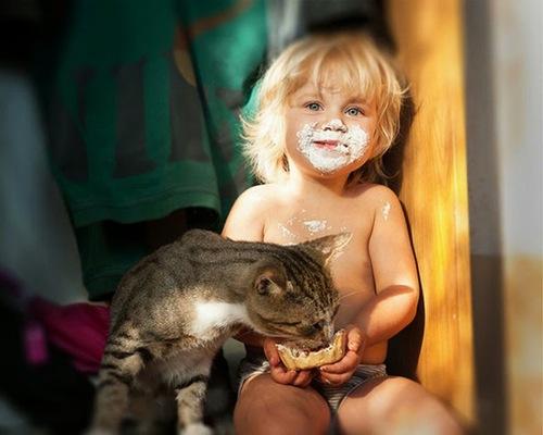 """""""Dieu créa le chat pour que l'homme ait un tigre à caresser chez lui."""" Victor Hugo"""