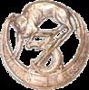 Insigne 3e Zouaves - France40