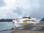 Avant-propos et sommaire de mes voyages aux Petites-Antilles