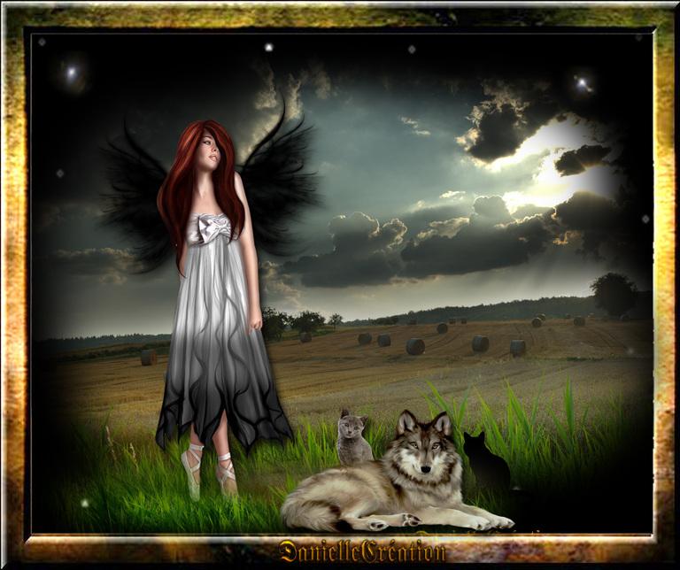 La fille au chats 01