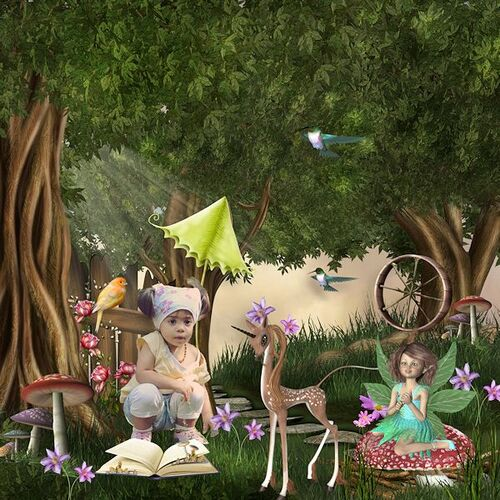 Kit FairyLand