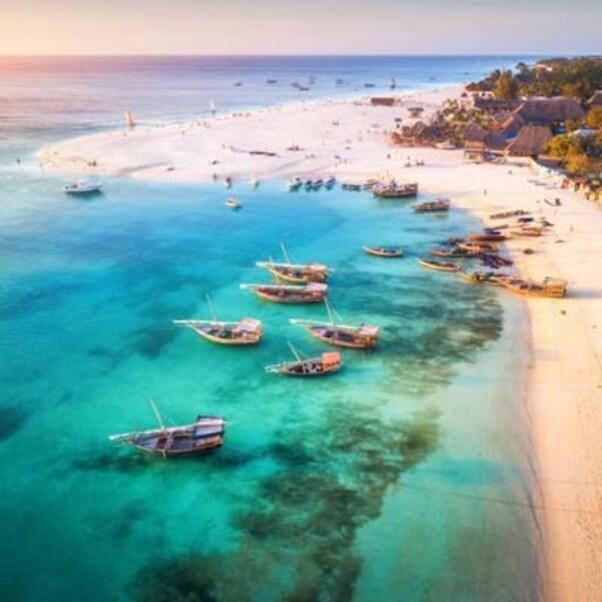 Destination: la Tanzanie,