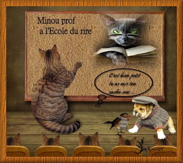 """Récape du défi """" Le prof Minou """""""