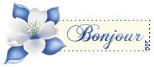 bonjour-bleu-en-giffe-copie-1.jpg