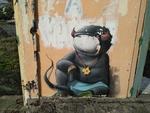 Les graffeurs à la Réunion
