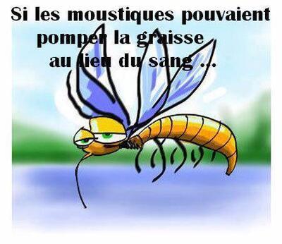 """Les moustiques """"like"""" ma peau!!!!  Et vous ?"""