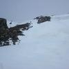 Avalanche sous le Peyralun