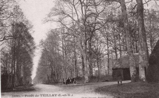 Forêt de Teillay