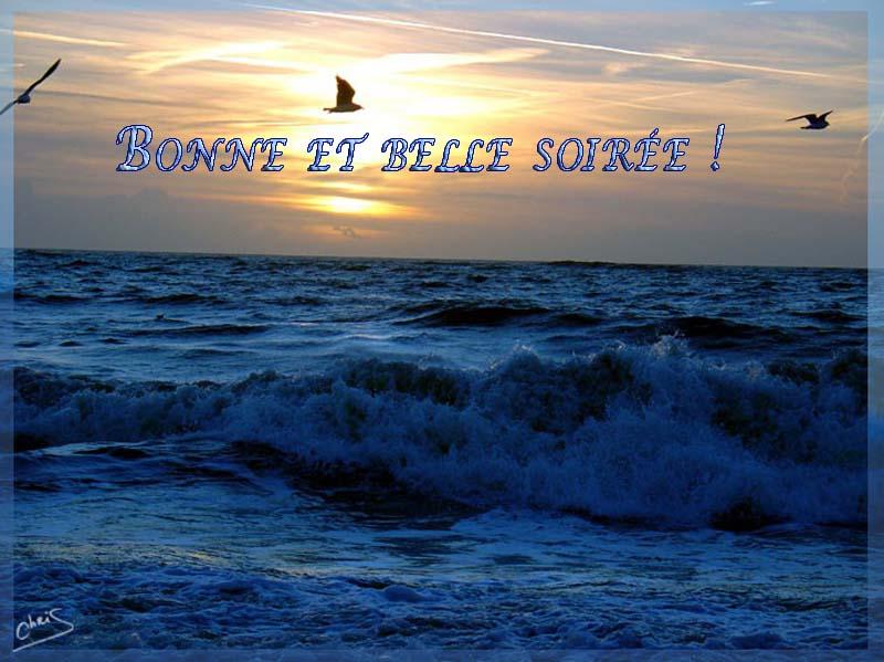 Thalassa : Vendée