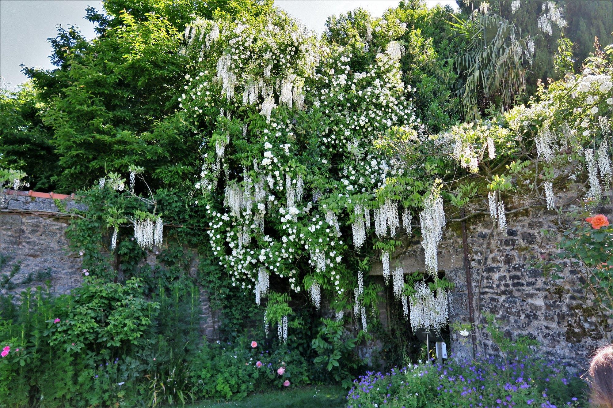 Parc Botanique de Haute-Bretagne : Cité Antique