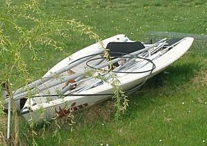 plantes-2012-IV-06--2570copie--le-wizz.jpg