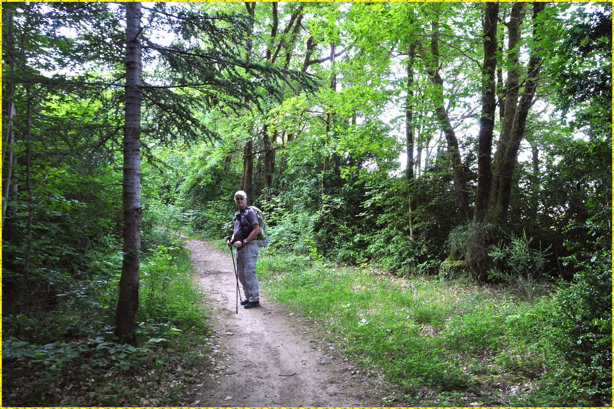 Peu après le départ de Challes-les-Eaux, sur le sentier du Brulin