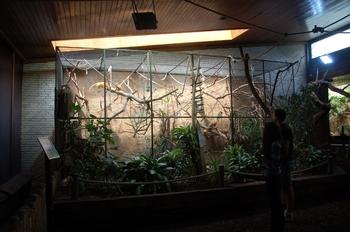 Zoo Duisburg 2012 780