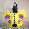 Papillon Jaune 2.JPG