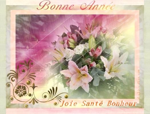 Bonne-annee-2010-6.jpg