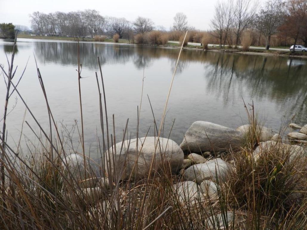 Lac St Jean