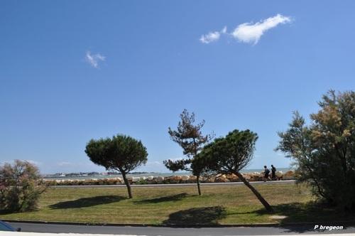 Le quartier de Port Neuf