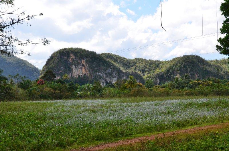 vallée de vinales cuba schnoebelen