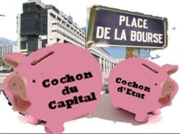 cochon_cochon_modifié-1